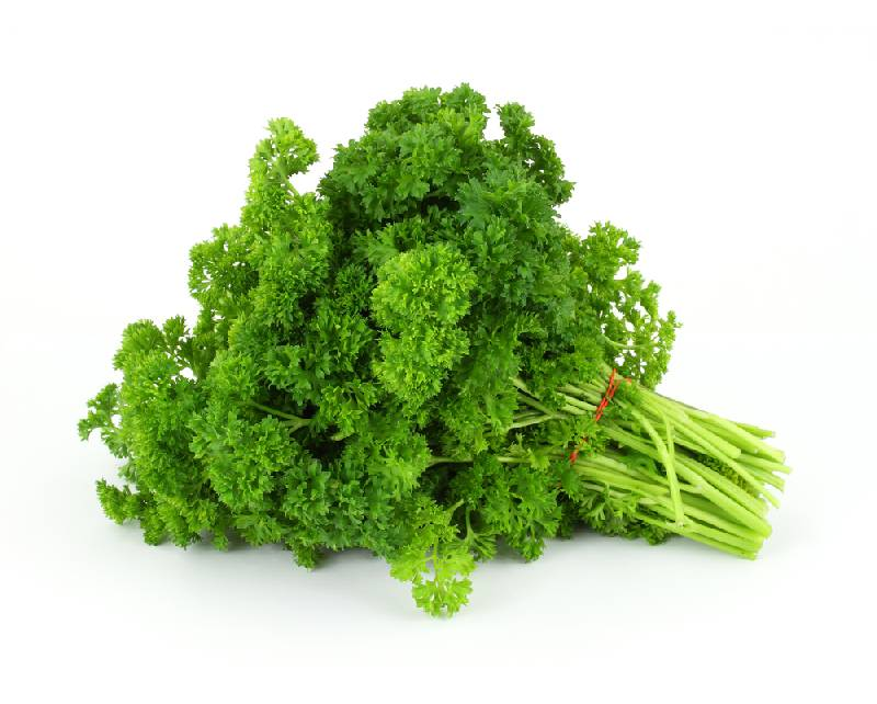 Parsley Herb Benefits