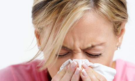 Foods that help fight colds